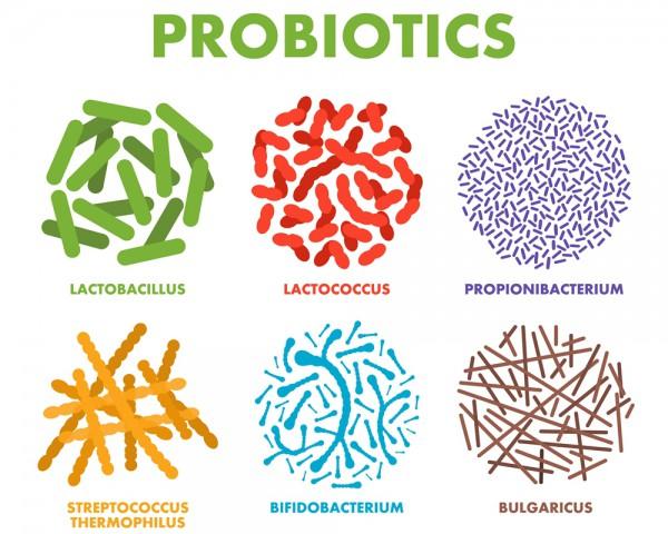 Probiotic กับเรื่องผิว และ Covid-19